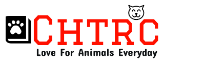 Chtrc – Love For Animals Everyday